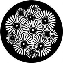 Rosco 71055 Sunburst Flowers Gobo